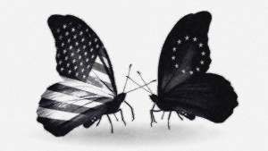 mariposas ttip